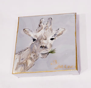 6X6 Giraffe with Grey Background