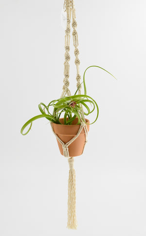 Stinson Studio-Large Handcrafted Macrame' Planter