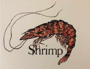 """Shrimp Print"" 8x10 by Kay Wallace - 318 Art and Garden"