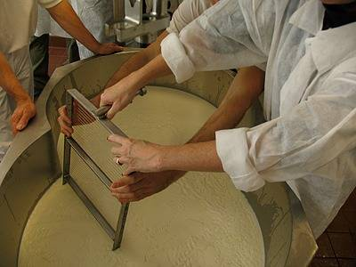French Alpine Cheese Making