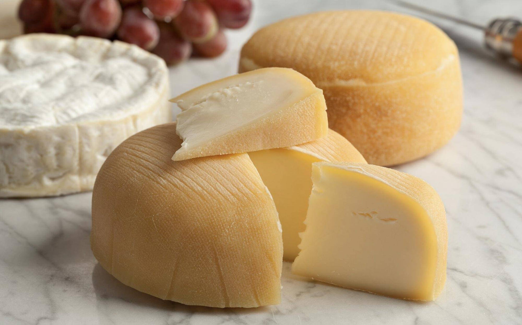 Learn About The Cheese Making Process | How to Make Cheese