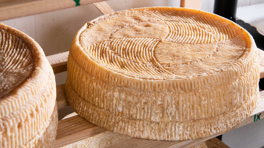 Learn About Cultures for Cheese Making