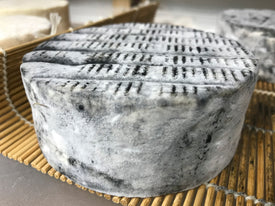 Cheese Making Workshop - Successful Aging