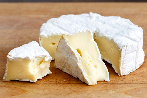 Brie Cheese Recipe  Cheese Maker Recipe  Cheese Making