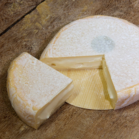 Asiago Cheese Recipe | Cheese Maker Recipes | Cheese Making | How to