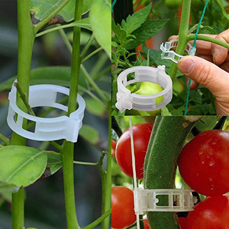 50/100pcs Reusable 25mm Plastic Plant Support Clips clamps For Plants Hanging Vine Garden Greenhouse Vegetables Tomatoes Clips