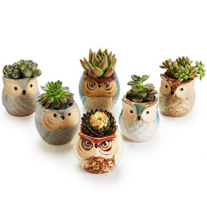 6pcs/lot Ceramic Owl Flower Pots Planters Flowing Glaze Base Serial Set Succulent Cactus Plant Container Planter Bonsai Pots
