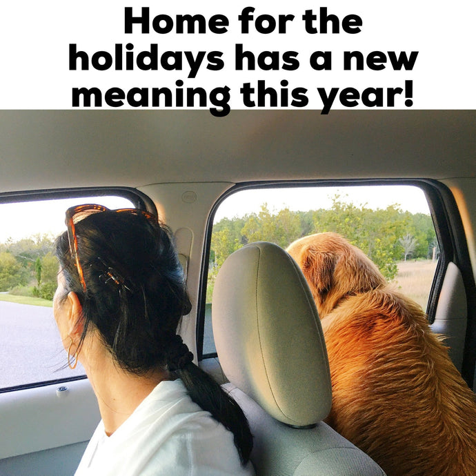 Home for the Holidays has a new meaning this year