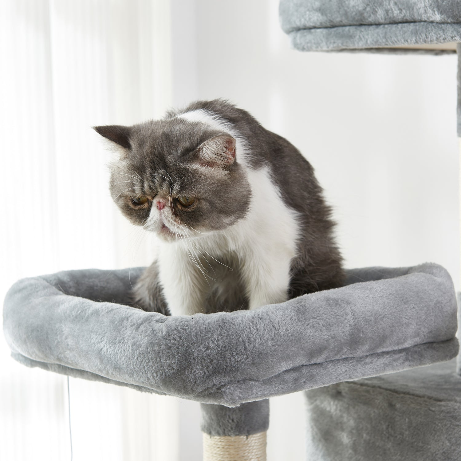 Dark Olive Green Large Cat Tree Condo with Sisal Scratching Posts Perches Houses Hammock, Cat Tower Furniture Kitty Activity Center Kitten Play House Gray W46918552