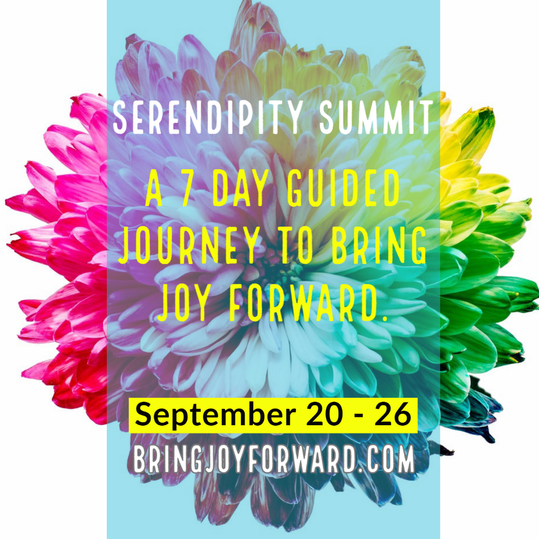 Serendipity Summit