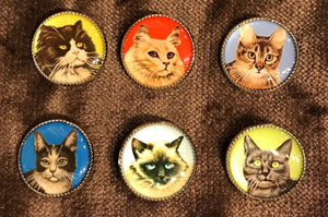 Picture Buttons - Cat Set