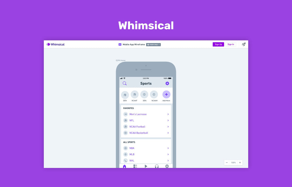 Whimsical, wireframe tool