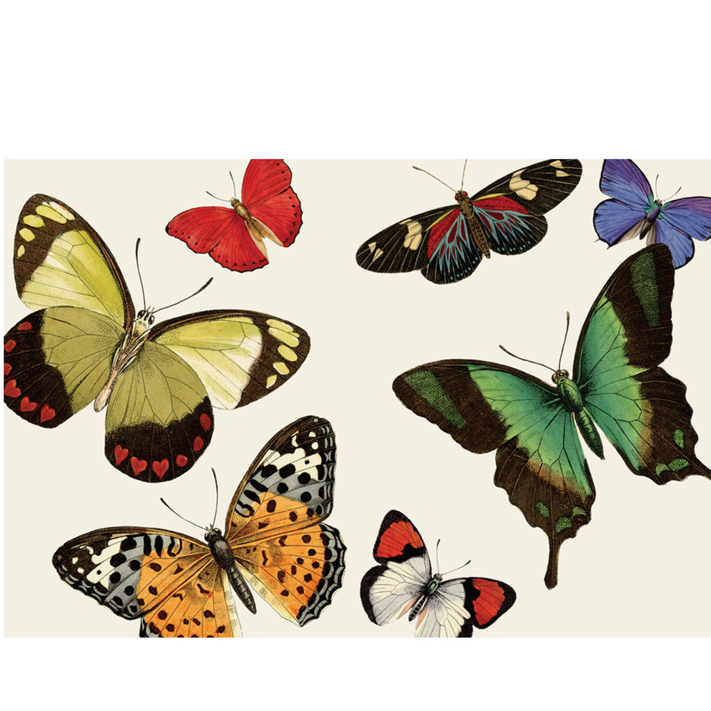 butterfly: paper placemats