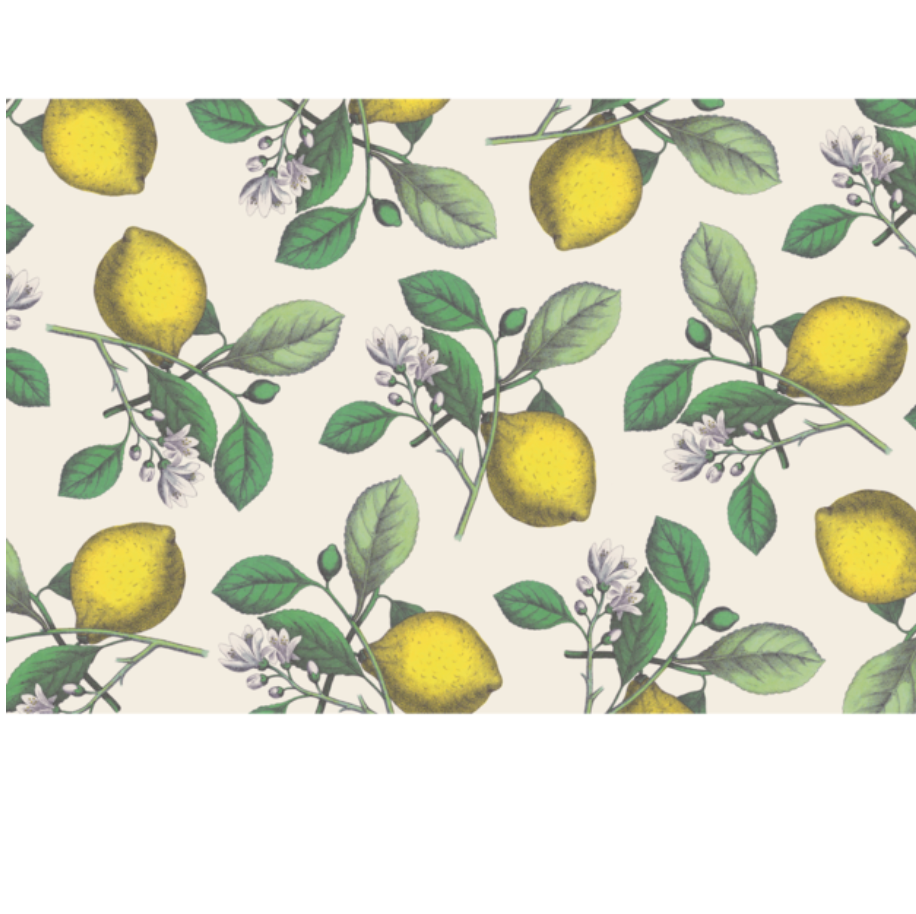 lemon: paper placemats