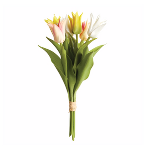 lily-flowered tulip bunch