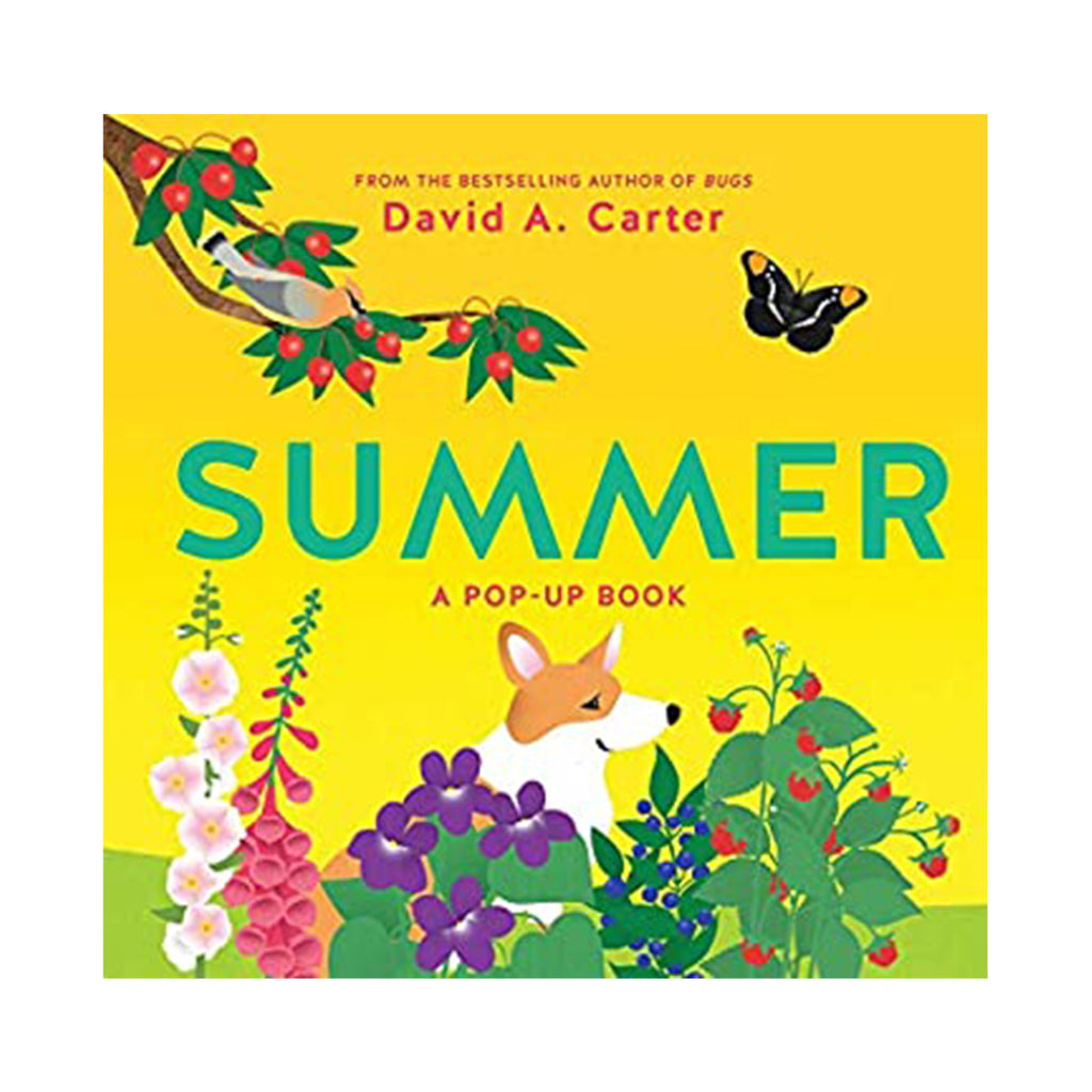 Summer: A Pop-Up Book (Seasons Pop-up)