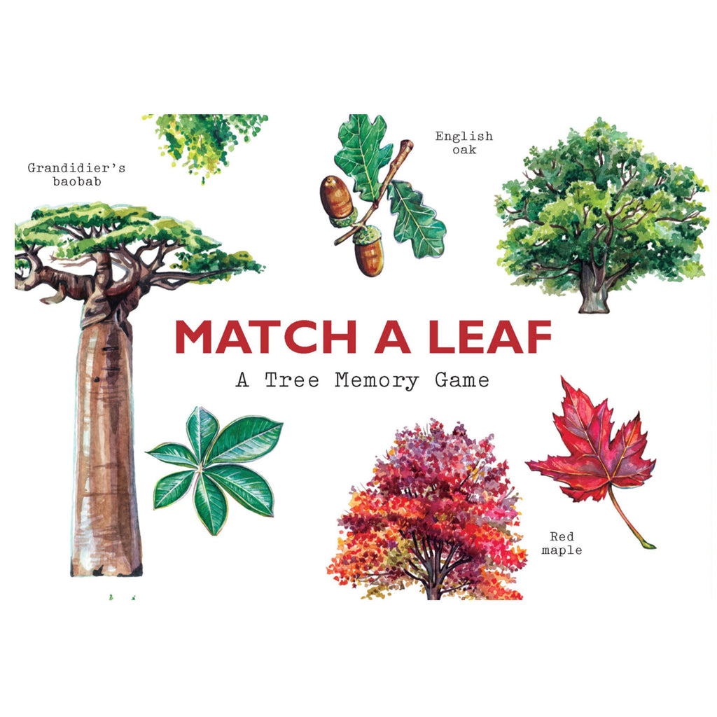 Match a Leaf- A Tree Memory Game