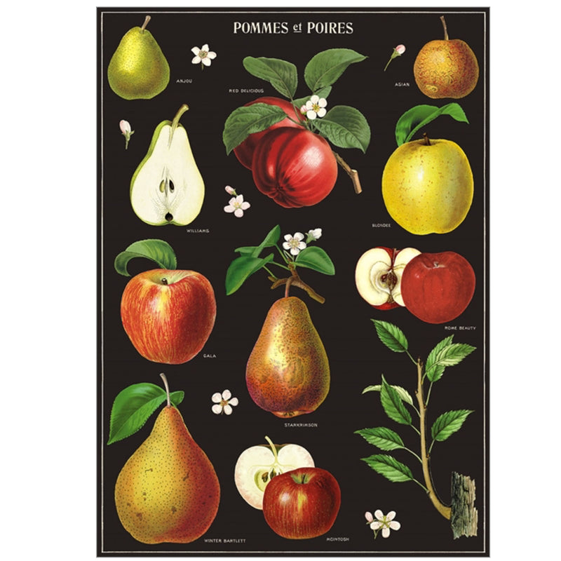 Apples + Pears  Poster