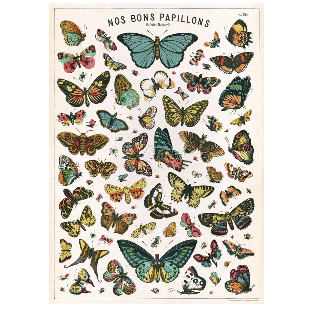 Nos Bons Papillons butterfly chart  Poster
