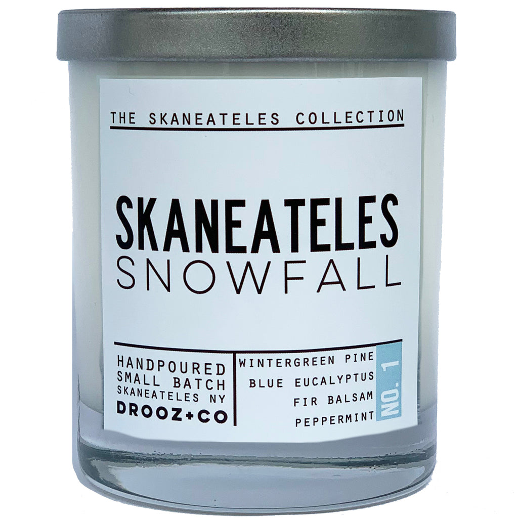 Skaneateles snowfall:Skaneateles Collection