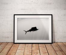Pelagic (Photo Print)