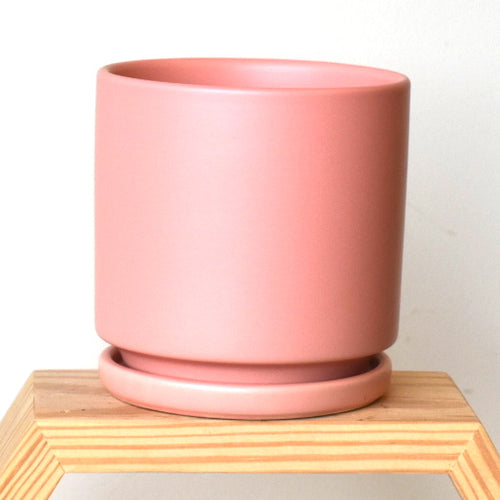bubble gum pink momma pot