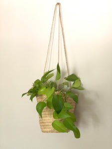 hanging plant basket large