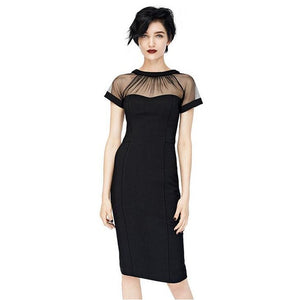 T'O 2016 Summer Vintage Sexy Transparent Mesh Sleeve Club Dresses Women Slim Pencil Chic Dress 151