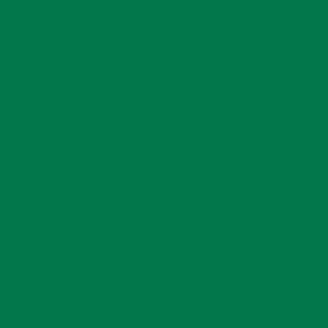 Oracal 651 Adhesive Vinyl 061 Green