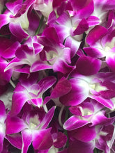 Ciel de Pourpre_ Purple_orchids_box des fleurs_baby shower_its a girl_ gifts foe her_baby girl_ mothers day_mother's day_ gift_ flowers_ vancouver_canada_easter flowers