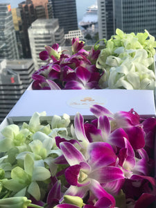 Fontaine Rose_ purple orchids_pink orchids_ Montagne Blanche_white_orchids_box des fleurs_baby shower_its a girl_ gifts foe her_baby girl_ mothers day_mother's day_ gift_ flowers_ vancouver_canada_easter flowers_ rare flowers_ gift foe her_ its a boy_ baby boy_ baby shower_ gift luxury_wedding flowers