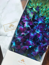 Océan Bleu_blue_orchids_box des fleurs_baby shower_its a girl_ gifts foe her_baby girl_ mothers day_mother's day_ gift_ flowers_ vancouver_canada_easter flowers_ rare flowers_ gift for her_ its a boy_ baby boy_ baby shower_ gift luxury_ mothers day gift_ mothers day flowers