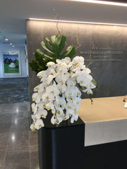 Corporate Flowers, Office Flowers, Brooklyn Flowers
