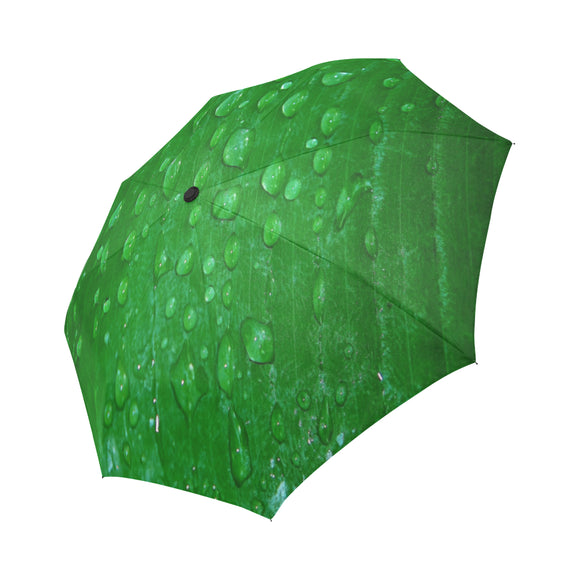 Anti-UV Wet Leaf Automatic Foldable Umbrella