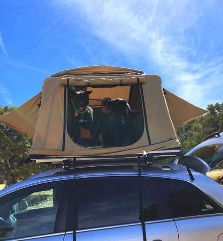 tepui tent with dogs
