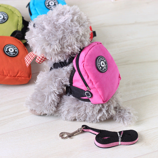 Backpack for Cats & Dogs with Harness leash