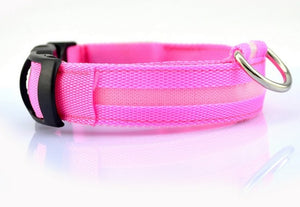 USB Rechargeable Pet Collar