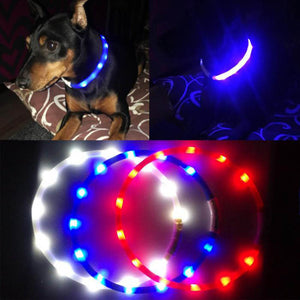 Rechargeable Flashing Dog Collar