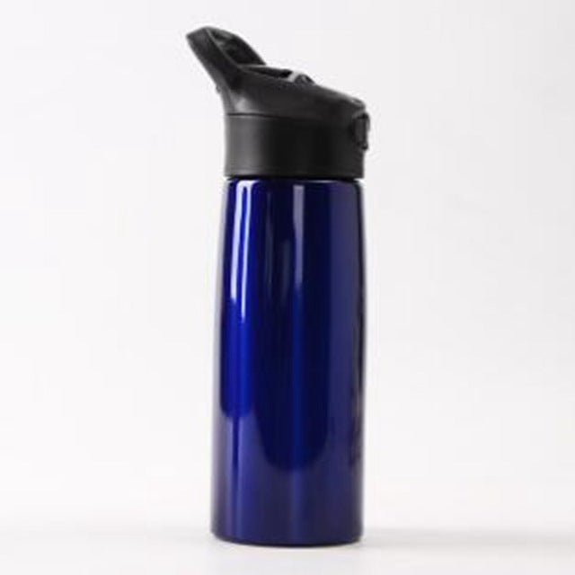 Stainless Steel Water Bottle With Straw