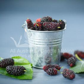 Wild Mulberry Candle Fragrance