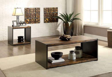 REINA Transitional End Table