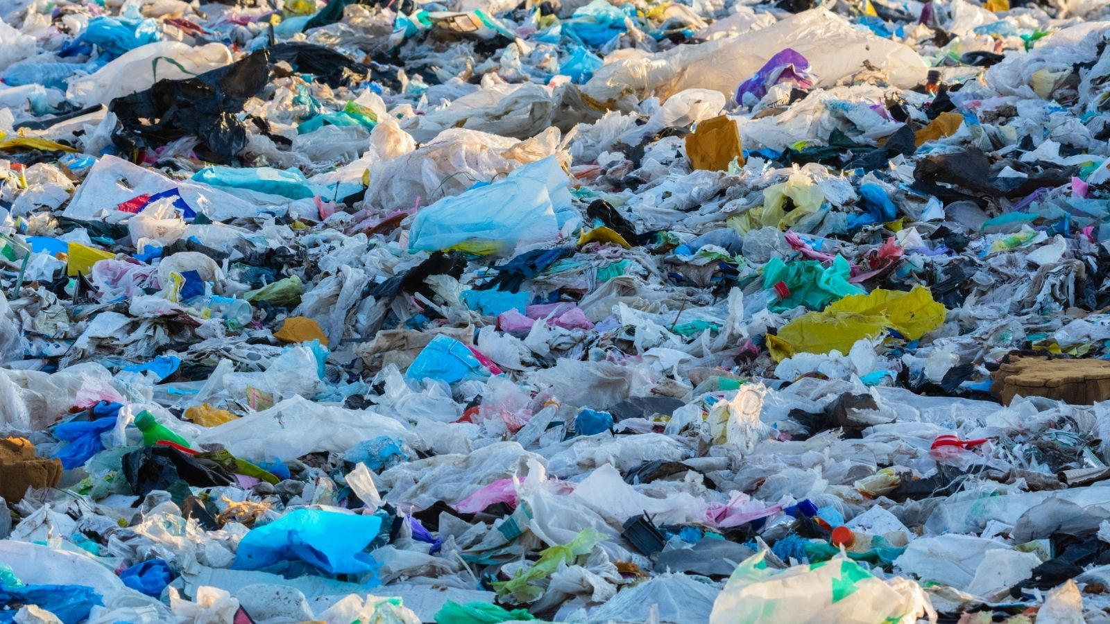 plastic pollution from scoops