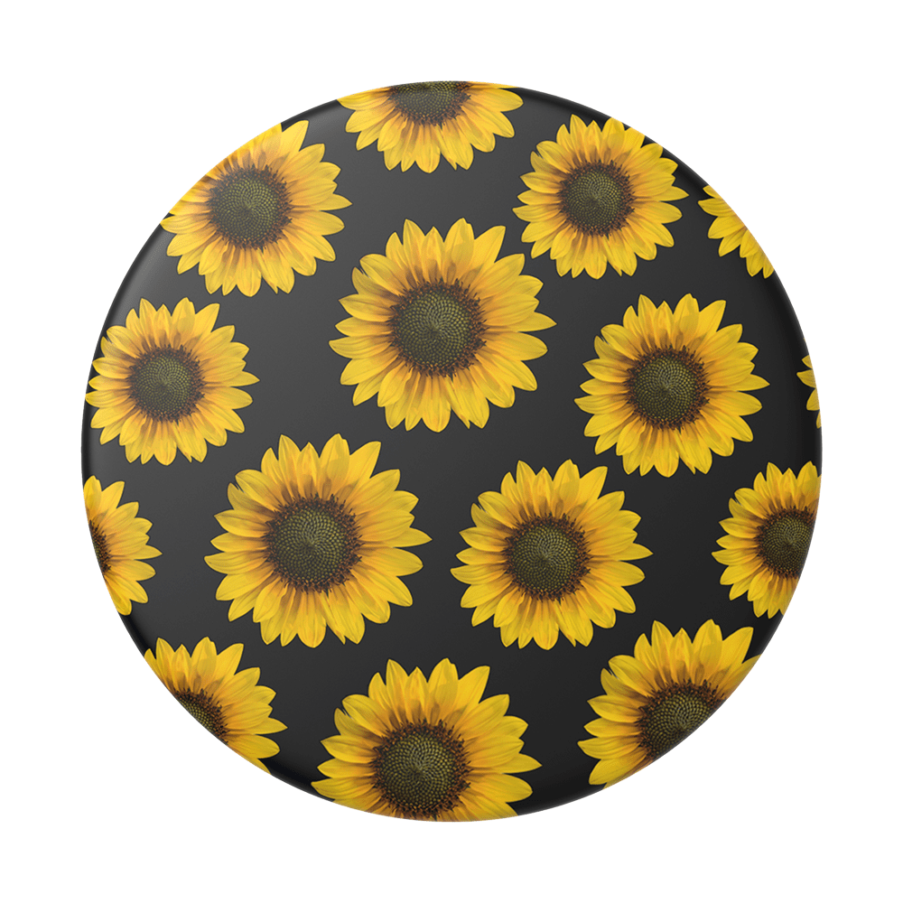 Sunflower Patch