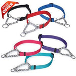 Guardian Gear Martingale Collars - 22-34 Inch - Red-Dog-Guardian Gear-PetPhenom