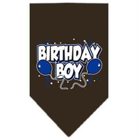 Mirage Pet Products Birthday Boy Screen Print Bandana, Large, Assorted Colors-Dog-Mirage Pet Products-Cocoa-PetPhenom