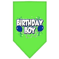 Mirage Pet Products Birthday Boy Screen Print Bandana, Large, Assorted Colors-Dog-Mirage Pet Products-Lime Green-PetPhenom