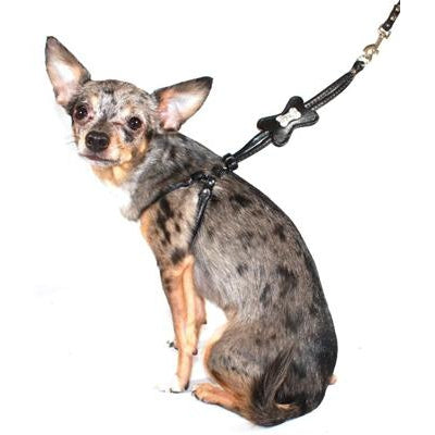 Hip Doggie Inc. Black Bone Designer Charm Step-in Harness by Hip Doggie -Medium-Dog-Hip Doggie Inc.-PetPhenom