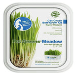 Bellrock Pet Greens Meadow Self Grow Tub-Dog-Bellrock Pet-PetPhenom