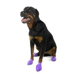 Pawz Dog Boots Large Purple-Dog-Pawz-PetPhenom