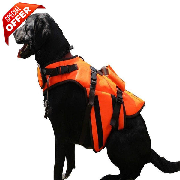 ABO Gear Aussie Life Jacket-Dog-ABO Gear-Large-PetPhenom